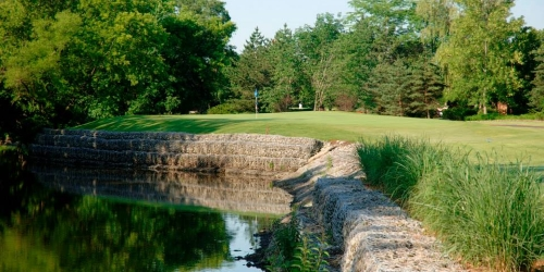 Crane's Landing at Lincolnshire Marriott Resort Illinois golf packages